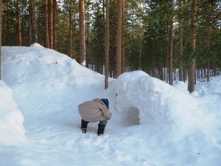 オーロラ、フィンランド、おすすめホテル、ゲストハウスハスキー、美味しいレストラン、フィンランド料理、イバロ