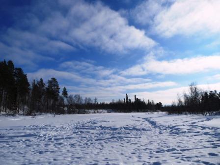フィンランド トナカイ そり オーロラビレッジ